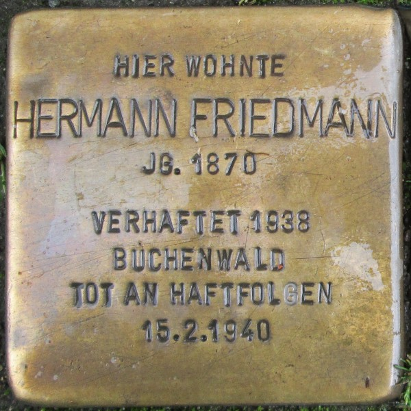 hermann friedmann