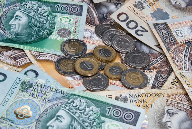 zloty-polski-pieniadze-banknoty-monety_19804915
